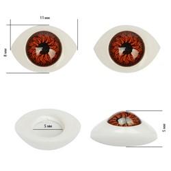 Глаза овальные выпуклые цветные  11 мм цвет карий 1 пара - фото 97525