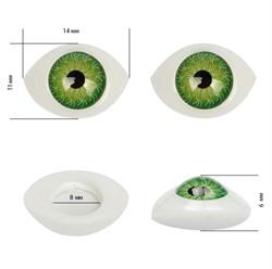 Глаза овальные выпуклые цветные  14 мм цвет зеленый 1 пара  - фото 97529