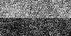 Флизелин клеевой точечный 25 г/кв.м черный 100*50 м