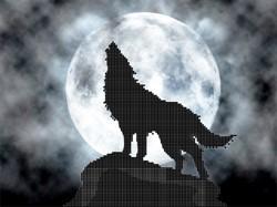"""Основа для вышивки бисером """"Одинокий волк""""  'Астрея Арт' 73030"""