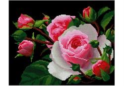 """""""Роза""""  """"Нитекс"""" 0002"""