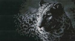 """""""Леопард"""" """"Нитекс"""" 0036"""