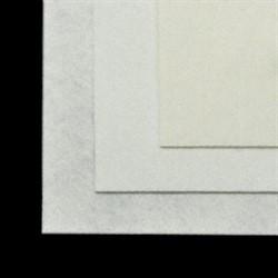 Фетр листовой жесткий  20х30см  1шт